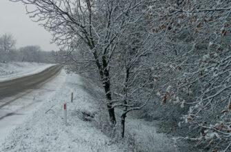 Zăpadă la Șoldănești, zăpadă, omăt, iarna 2020